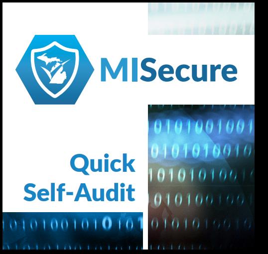 misecure-self-audit